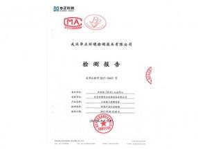 工业废气检测报告